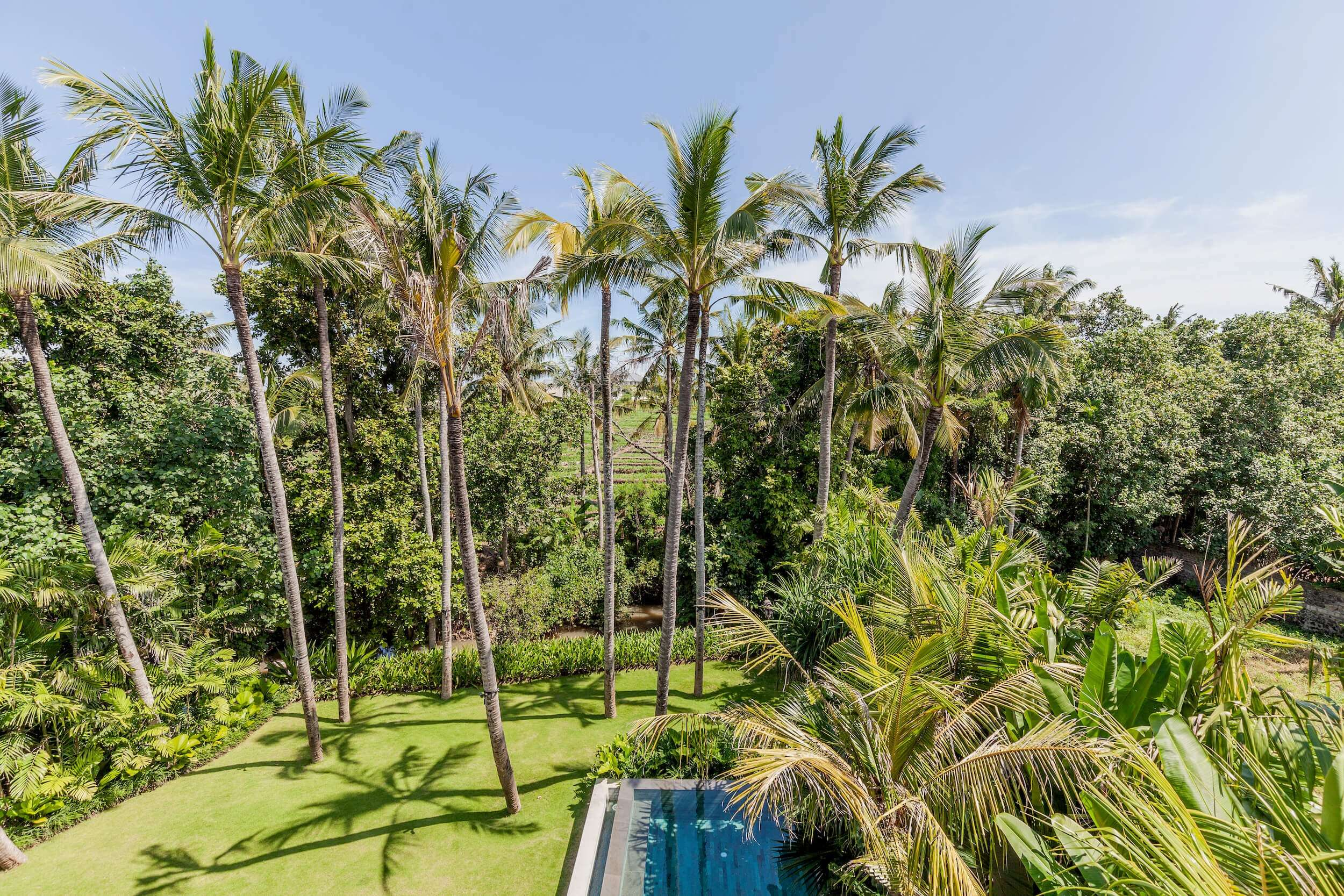 pristine garden with a large pool and tall palm trees