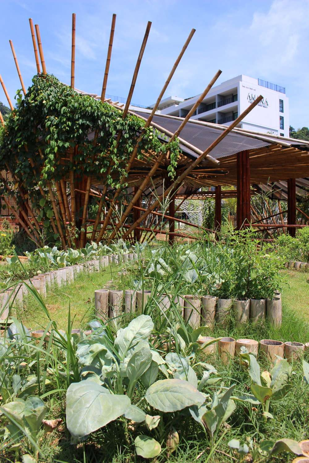Organic vegetable garden and bamboo yoga shala at Anana Ecological Resort, Krabi, Thailand