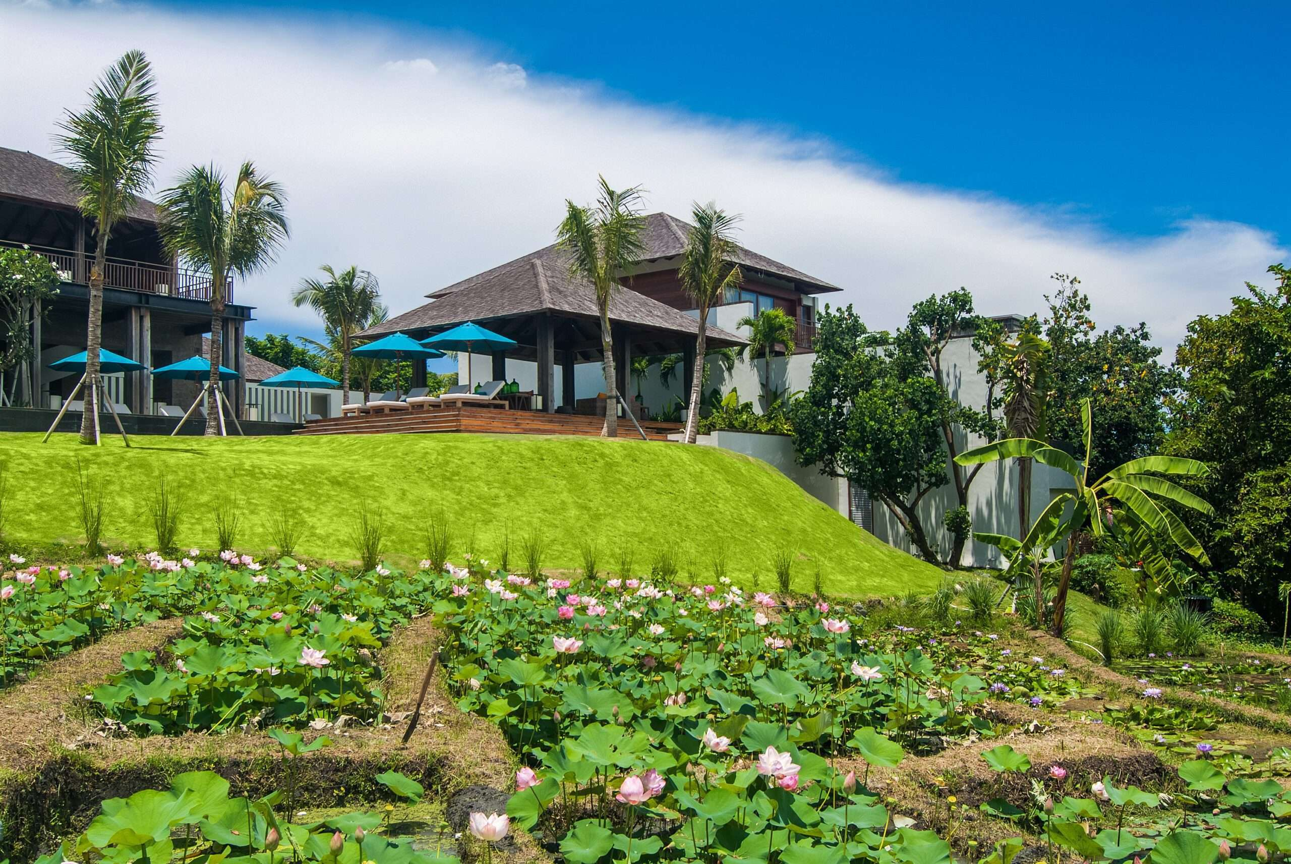 lush rice paddies and gardens surround Ambalama Bali, one of the top villas in the world