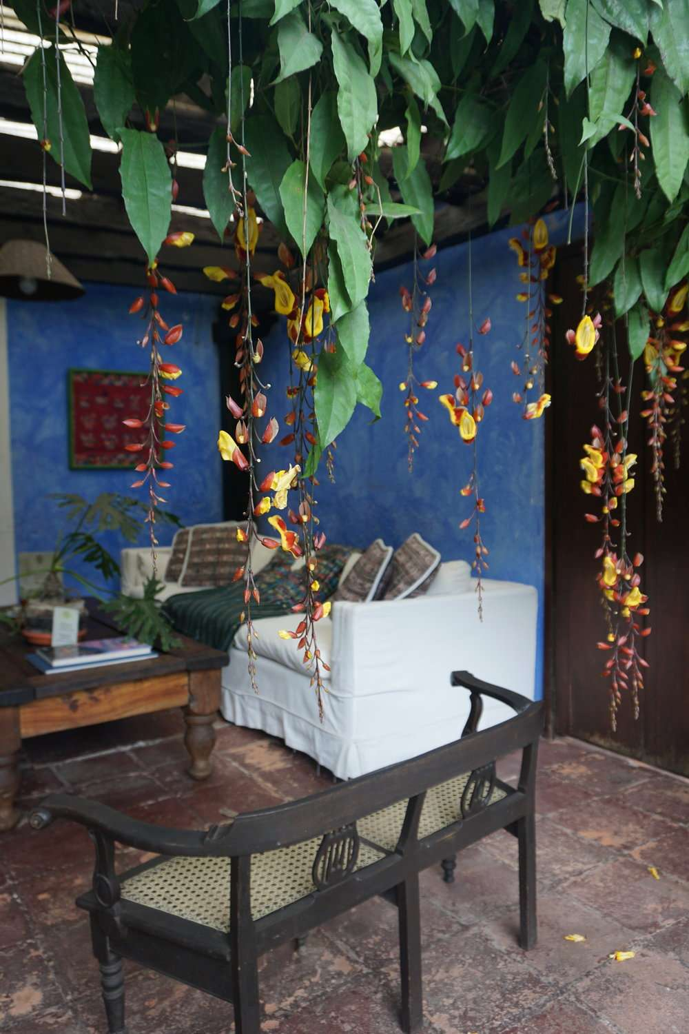 cosy terrace with blue walls and white sofas, in the garden at Casa Capuchinas