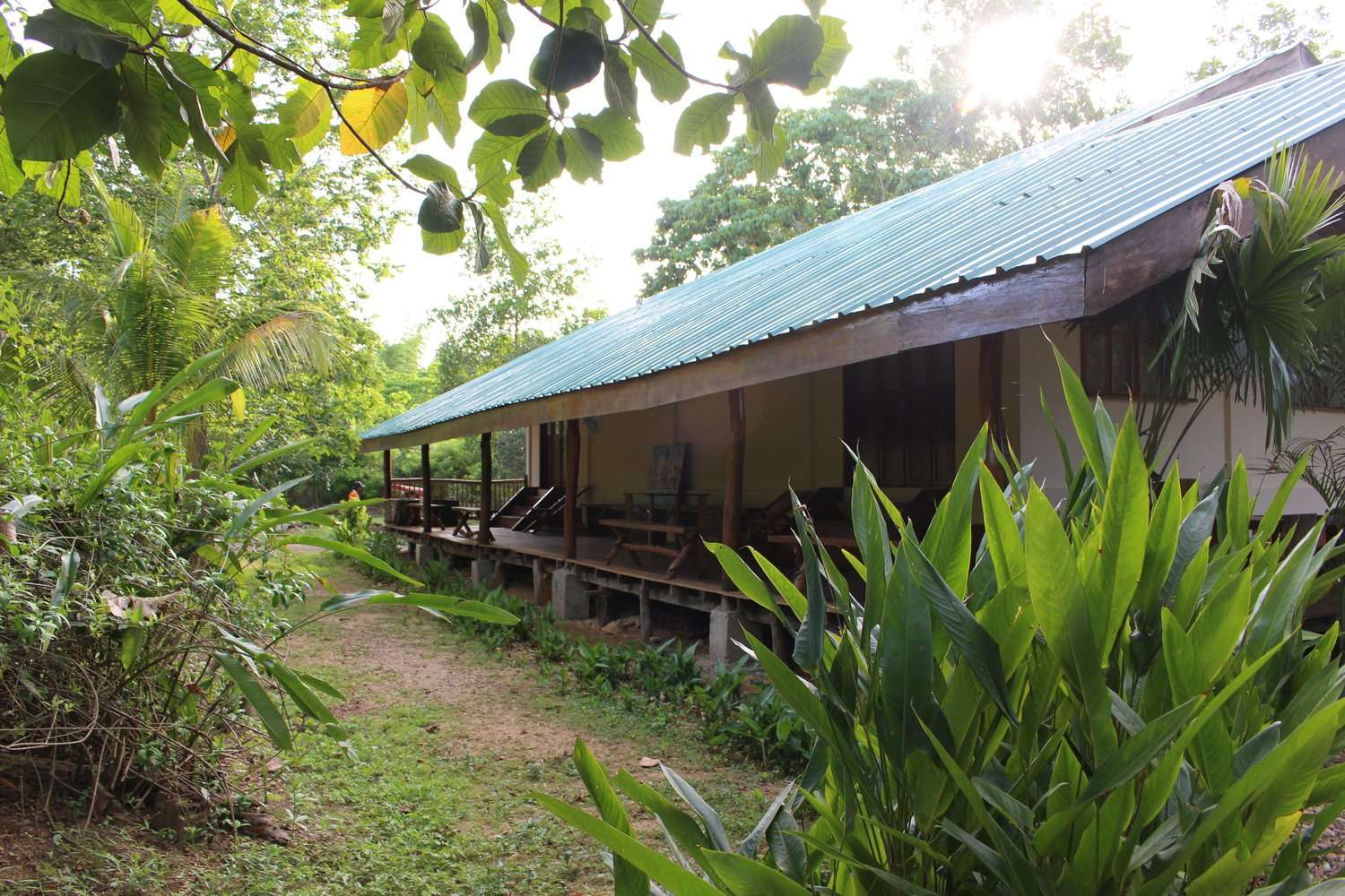 Sustainable rainforest lodge surrounded by lush greenery at Casa Fidelis in Coron