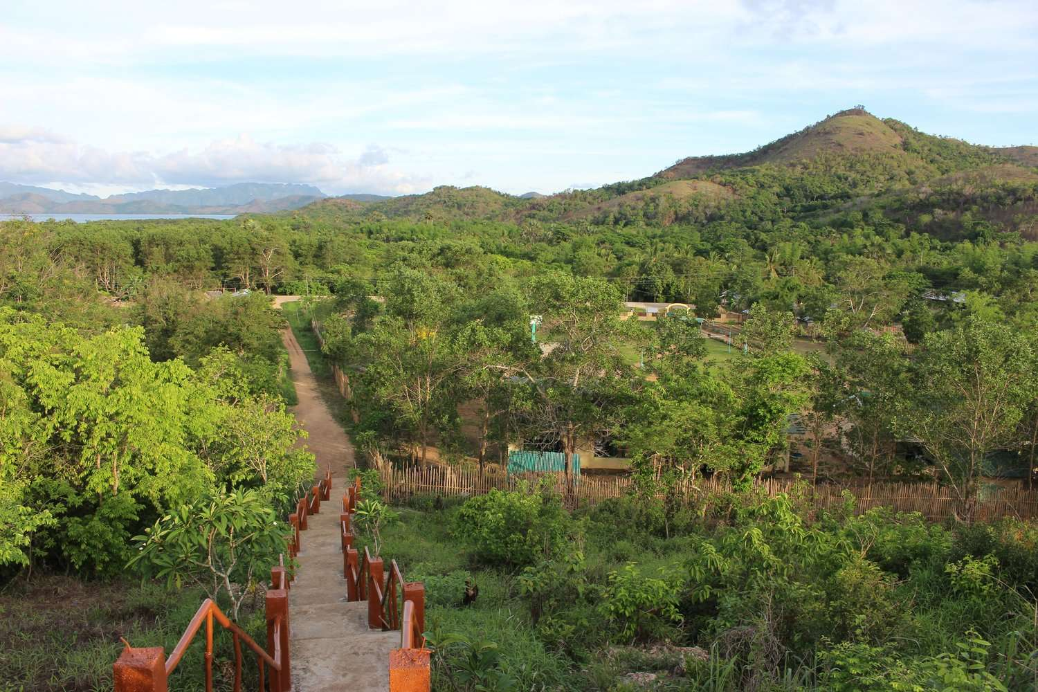 view over a lush green rainforest with hills and the sea in the distance, in Coron, Philippines