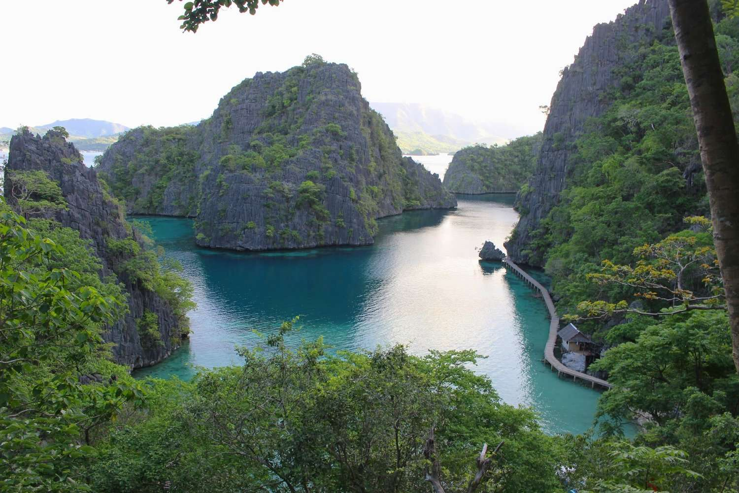 turquoise water surrounded by karst rock islands, view from the steps to Kayangan Lake on an island hopping tour in Coron