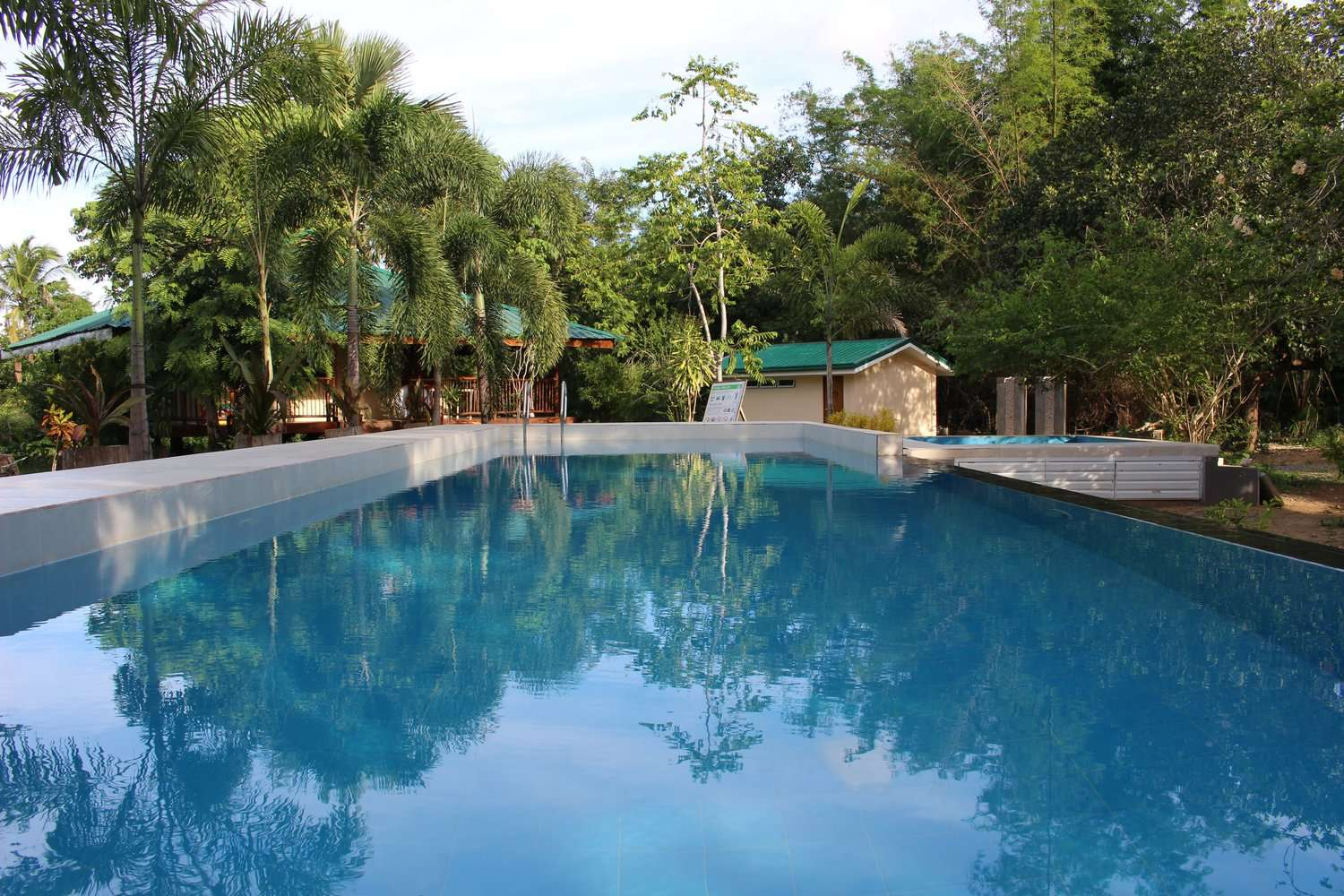 swimming pool surrounded by trees at Casa Fidelis, Coron