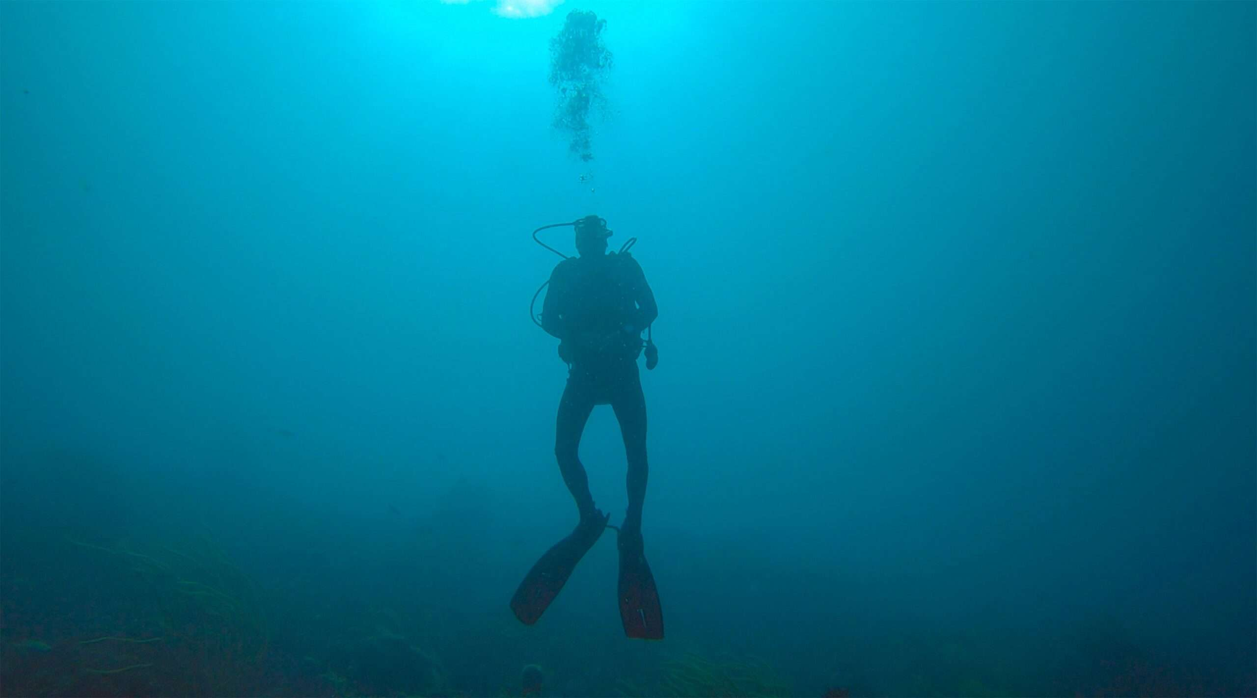 silhouette of a scuba diver underwater, one of the best things to do in Lake Atitlan