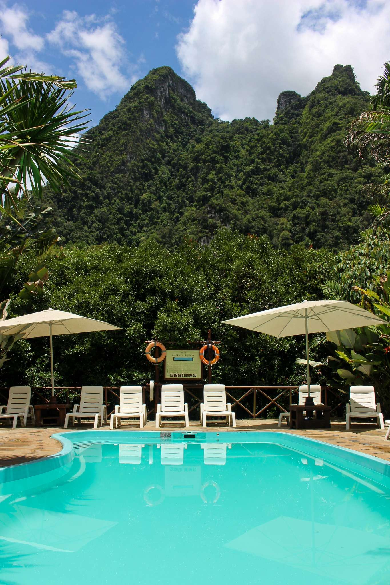 swimming pool surrounded by trees at Elephant Hills rainforest camp