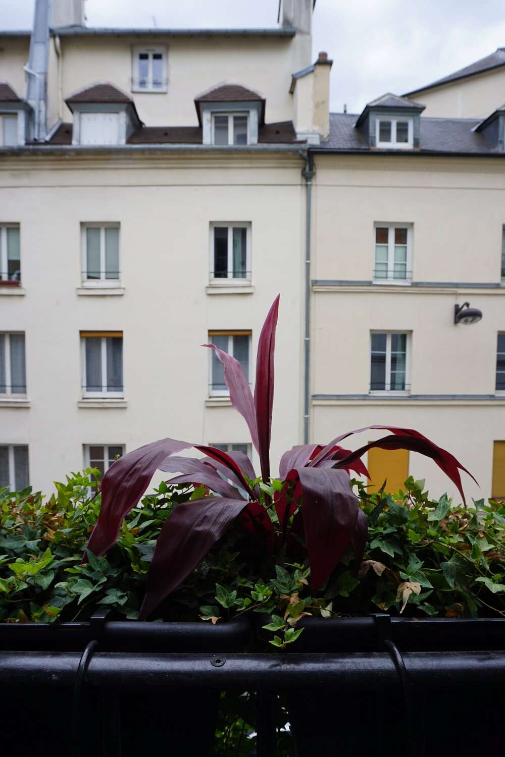 typical Parisian buildings seen from the bedroom at Hotel Monte Cristo Paris