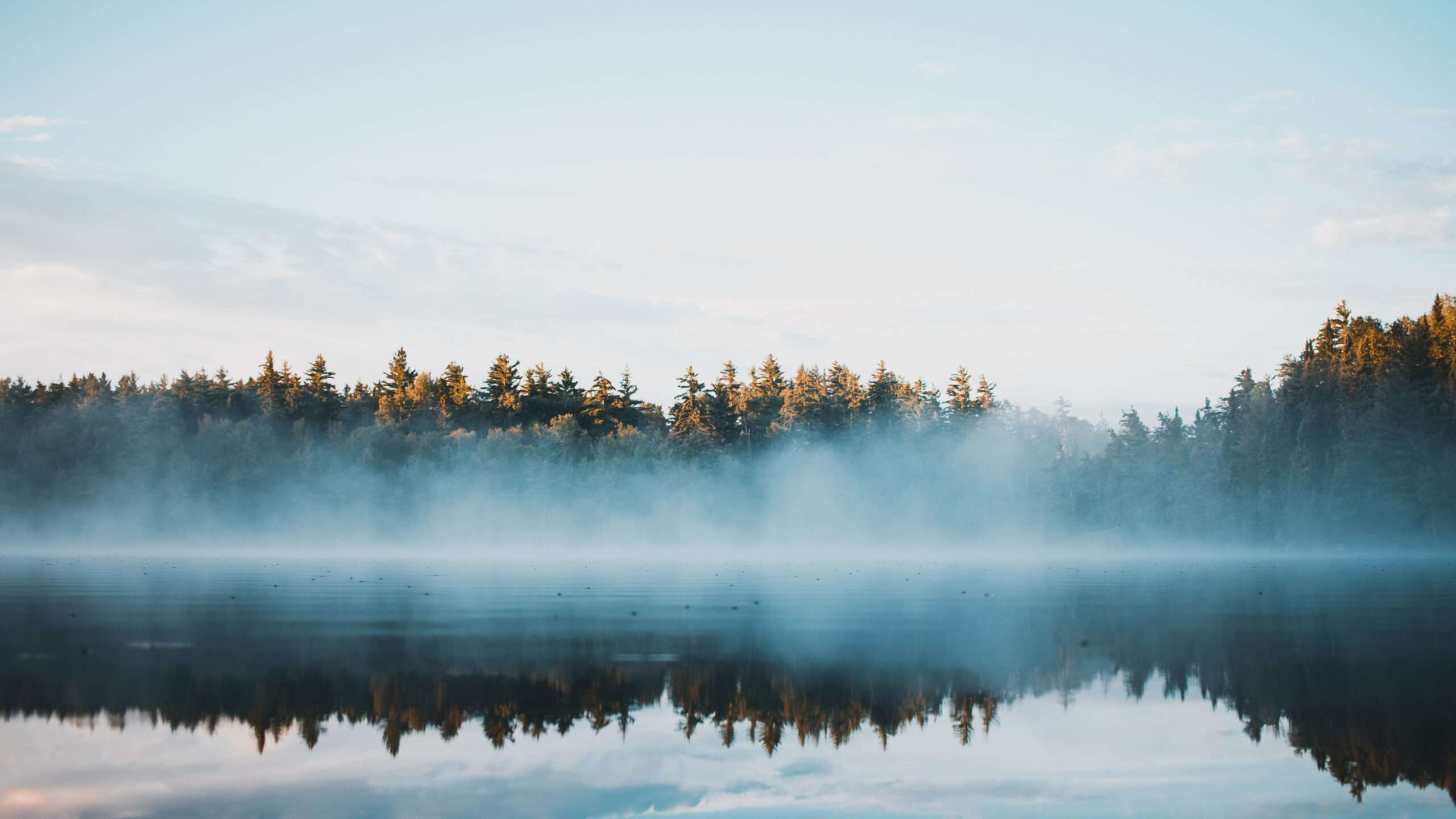 Misty lake in Ontario