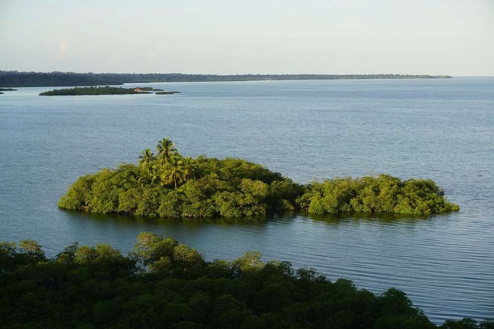 small green island surrounded by water in Bocas del Toro, Panama