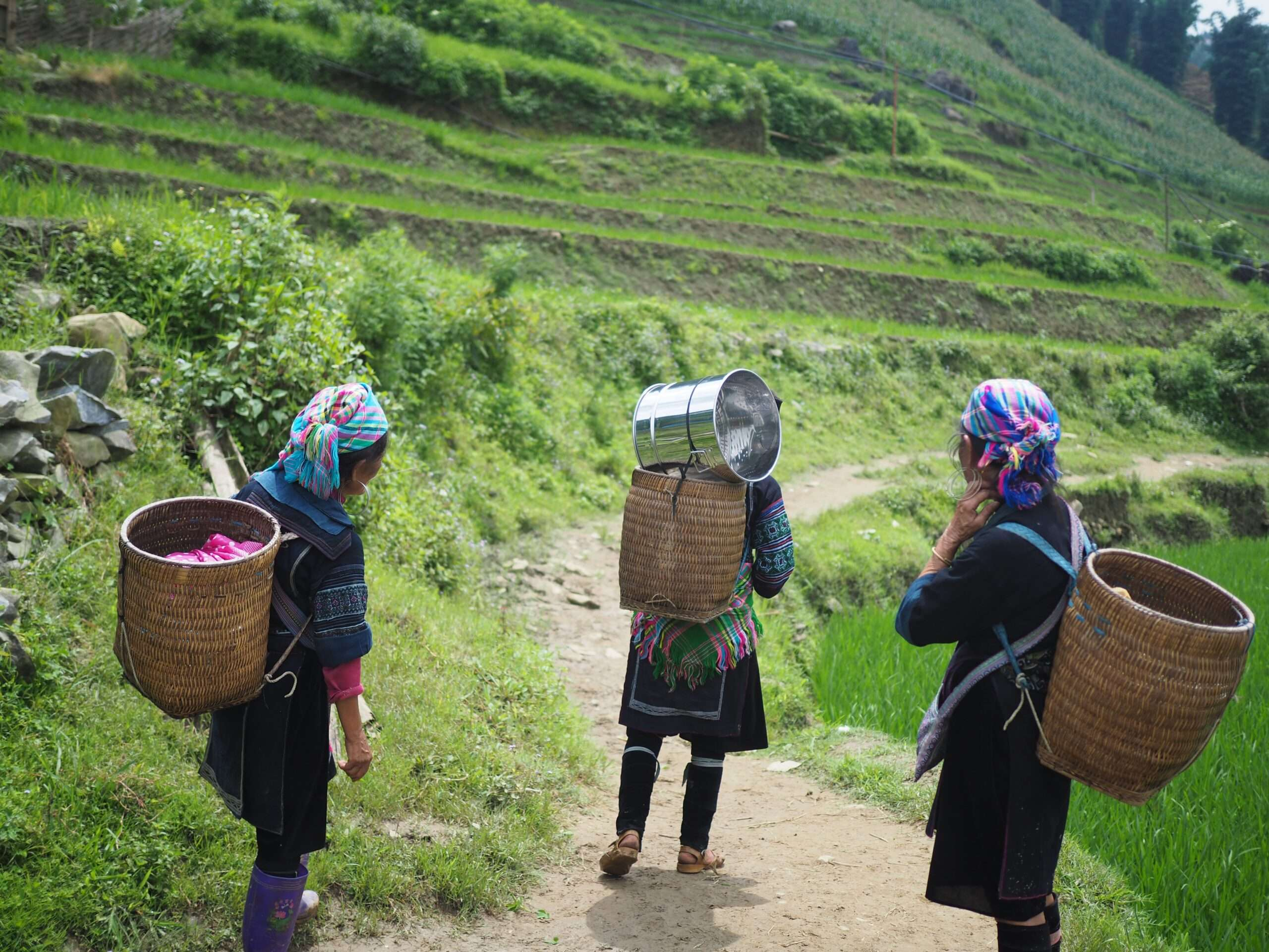 three ladies in traditional Vietnamese tribal dress carry woven baskets on their backs through the hills in Sapa
