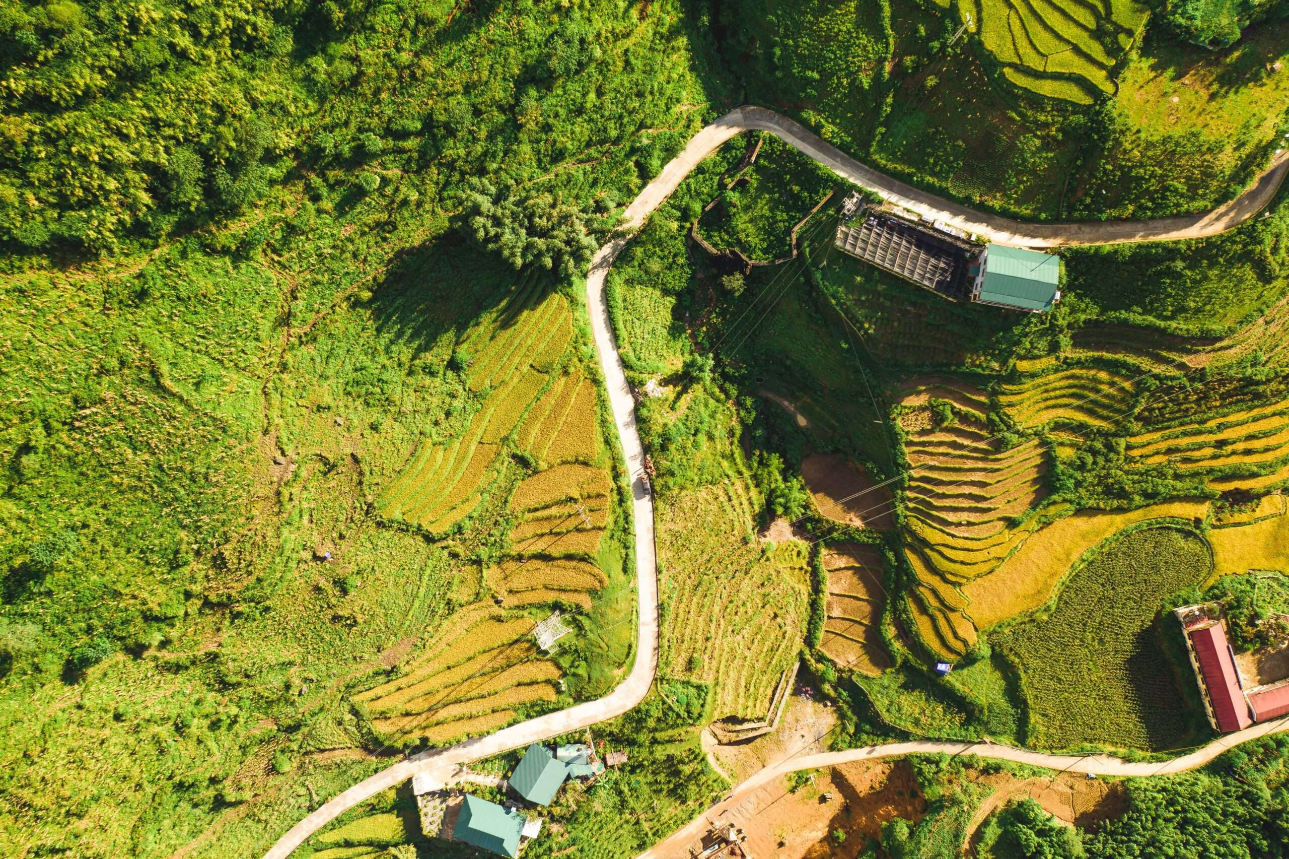 road winds through rice paddies in Sapa, seen from above
