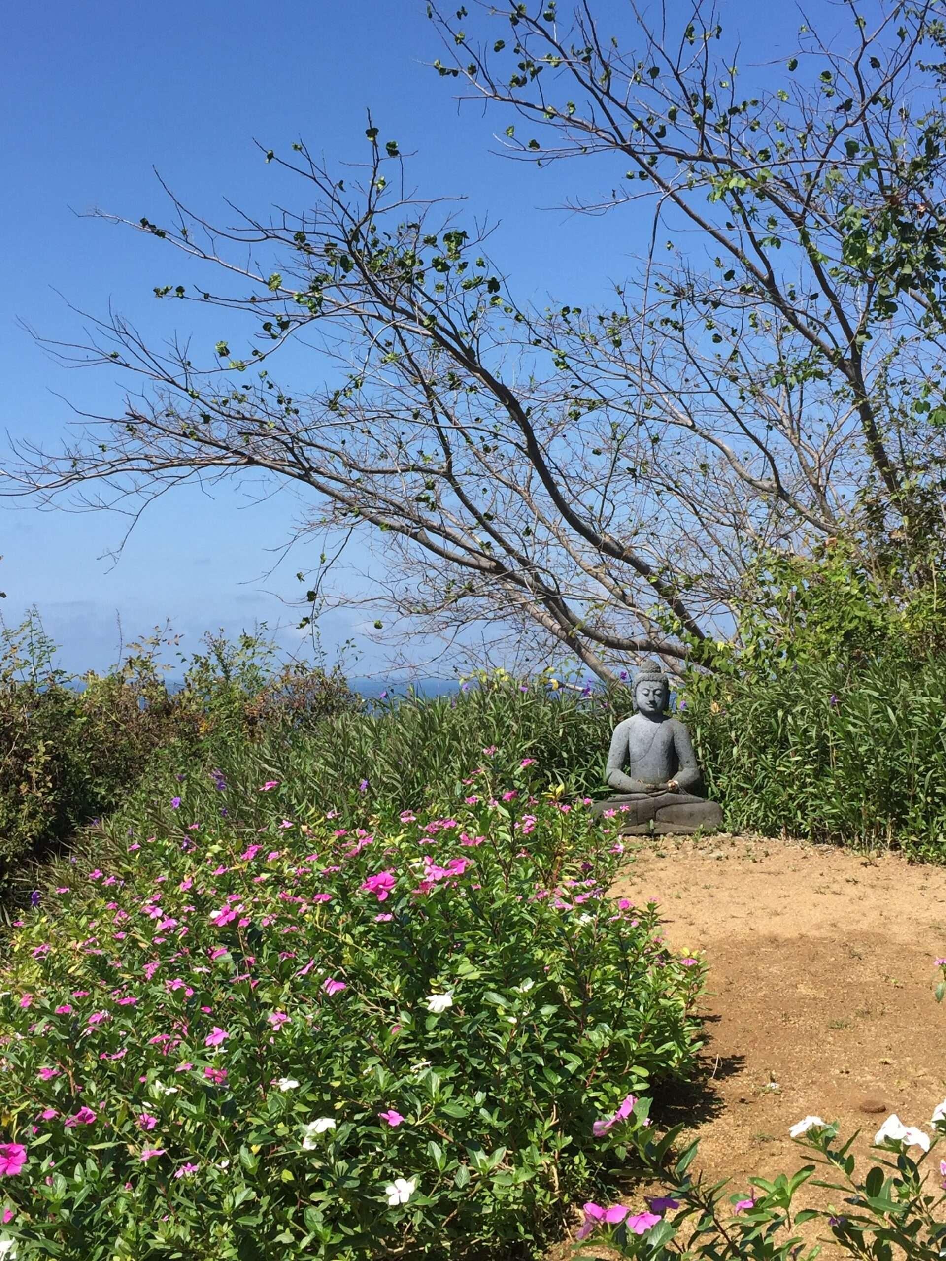 haramara retreat buddha statue on path