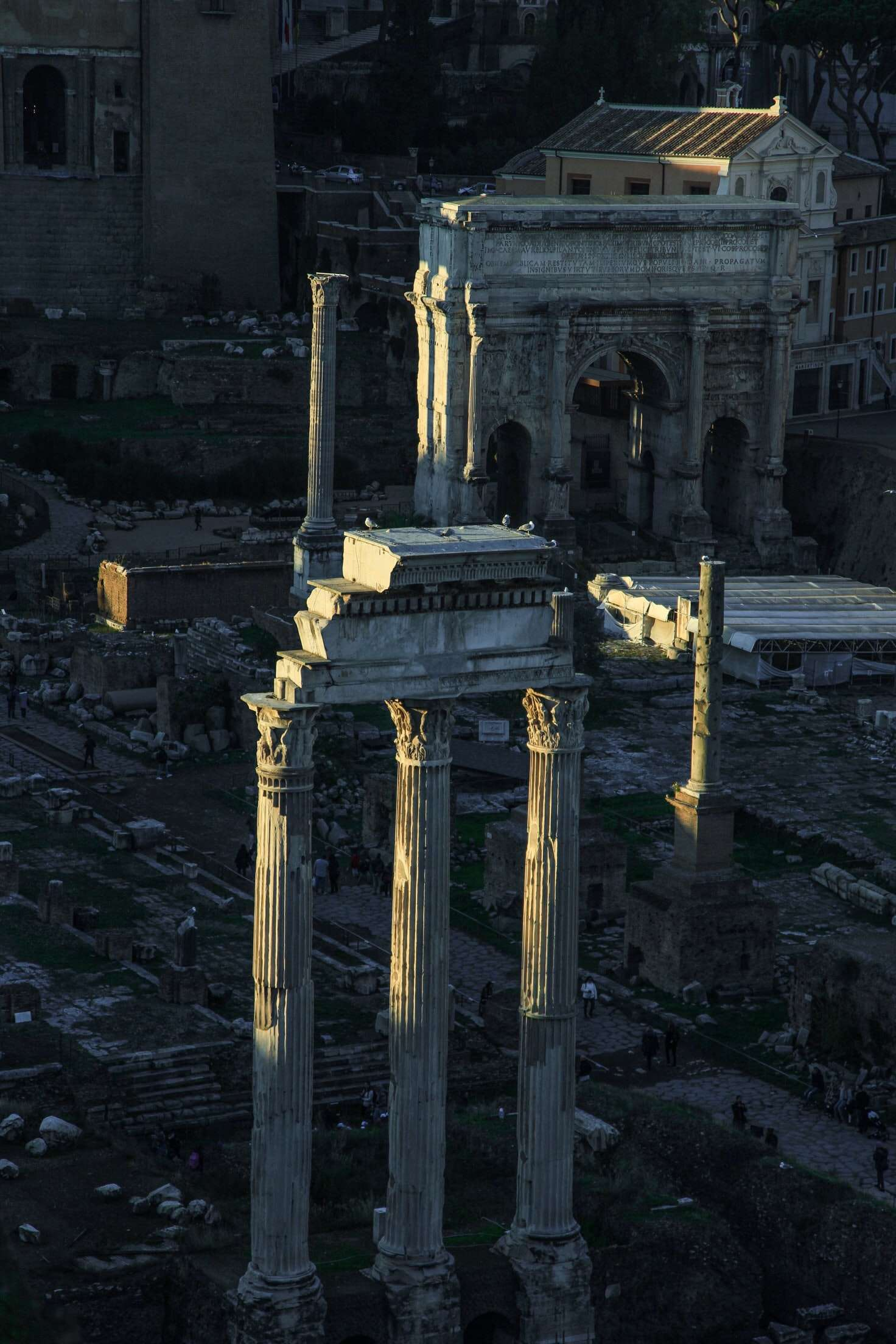 The Forum, one of the Best things to do in Rome