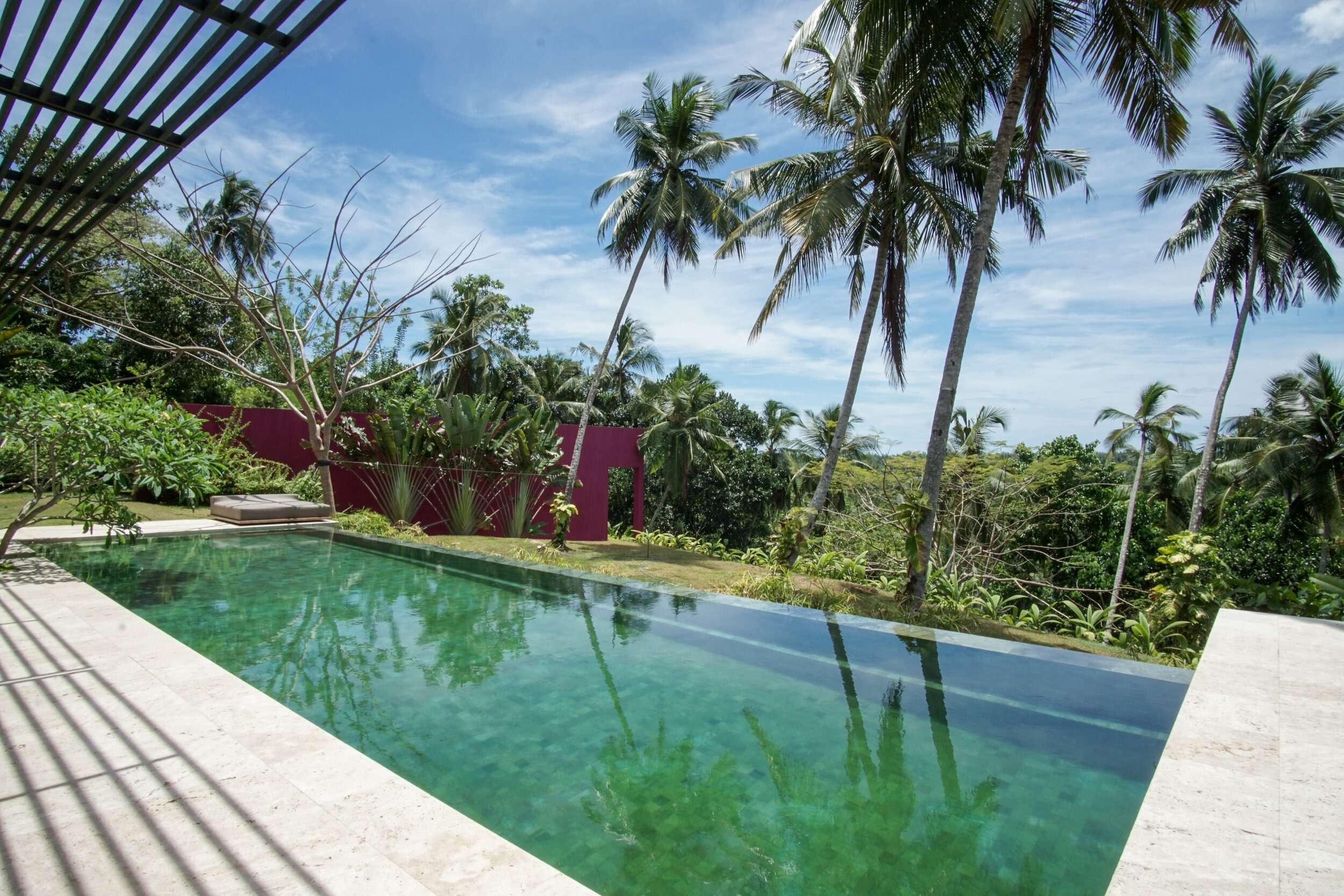 infinity pool with palm trees at Villa Wambatu, Sti Lanka